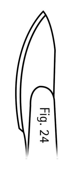 130293.jpg